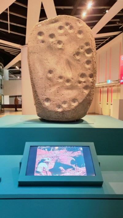 Tête colossale Olmèque n°4 vue de derrière © M.C.