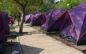 露營區照片