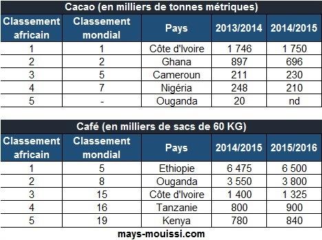 Classement des pays africains producteurs de cacao et de café