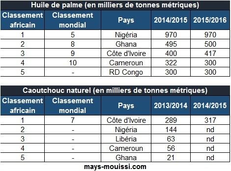 Classement des pays africains producteurs d'huile de palme et de caoutchouc naturel