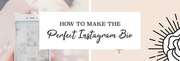 How-To-Make-The-Perfect-Instagram-Bio-Cover
