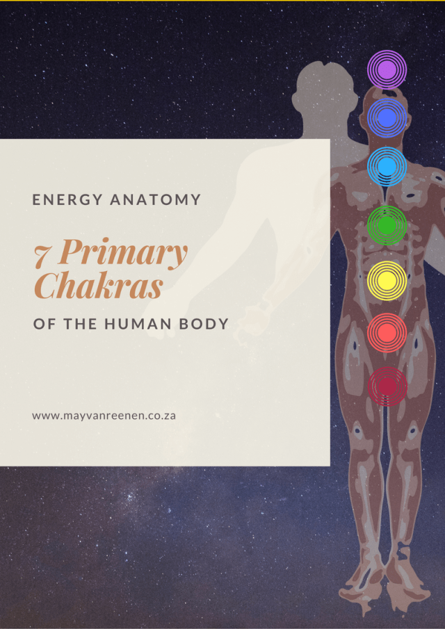 Energy Anatomy of the Human Body
