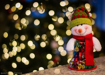 Holiday lights and snowman by shutterfotos