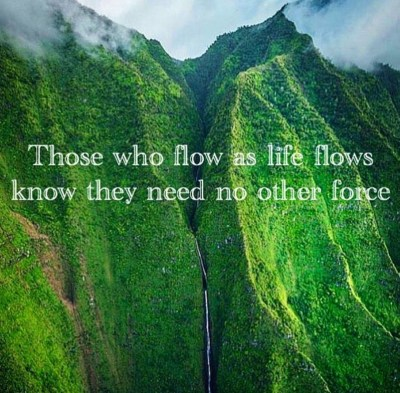 Flow of Life Quote