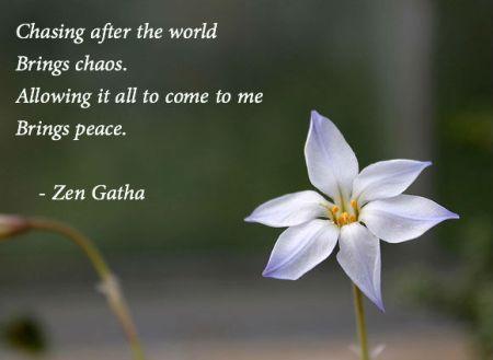 zen chasing world qote