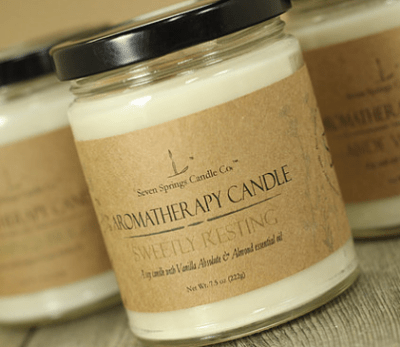 Sudsy Soapery Seven Springs Soy Candle