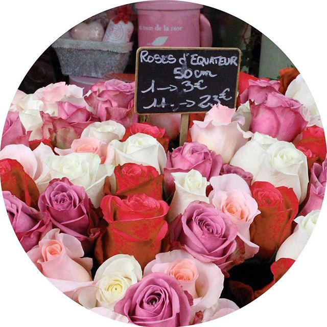 Pink, white and red roses at the Marché aux Fleurs in Paris