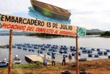 Pesca Deportiva en Presa Picachos (Iguanas)