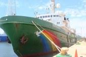 Esperanza de Green Peace en Mazatlan