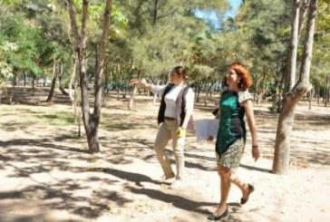"""Sistema DIF busca """"padrinos"""" para rescatar el Bosque de la Ciudad"""