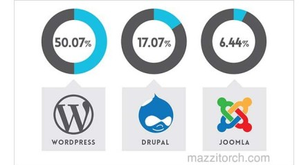 what is the best CMS