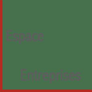 espace conseil aux entreprises