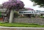 Indian Institute of Plantation Management