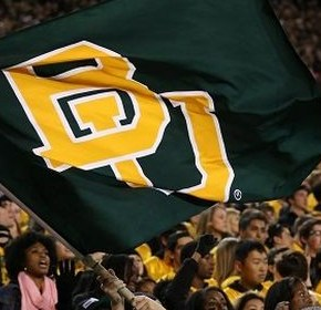 Donning the Green and Gold