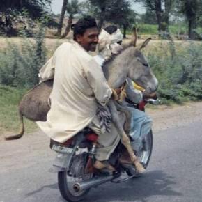 He Rides On - David Zahl