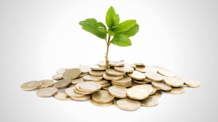 Seed Capital_Growth Capital_Mbugua Njhia