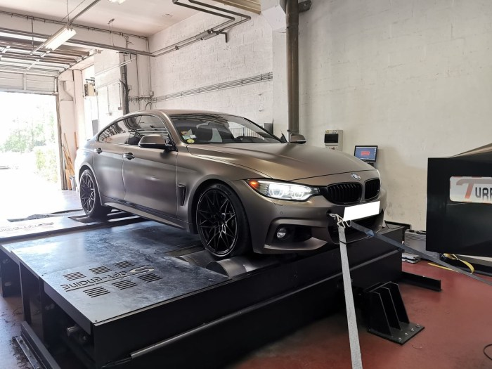 reprogrammation bmw 435d