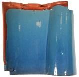 CO1 Blue