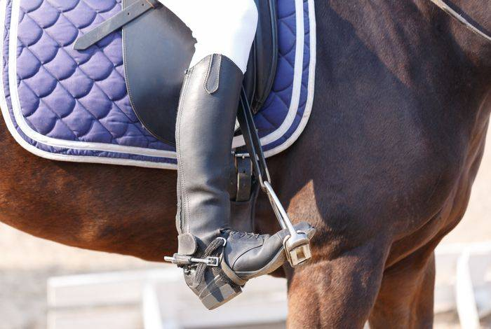 Equine Insurance mistakes blog post