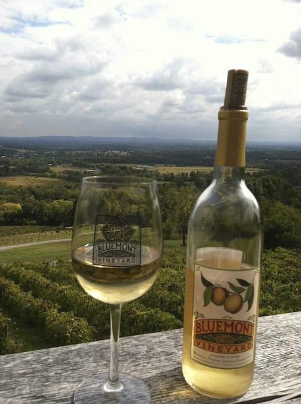wondrous views from Bluemont Vineyard in Loudoun County Virginia