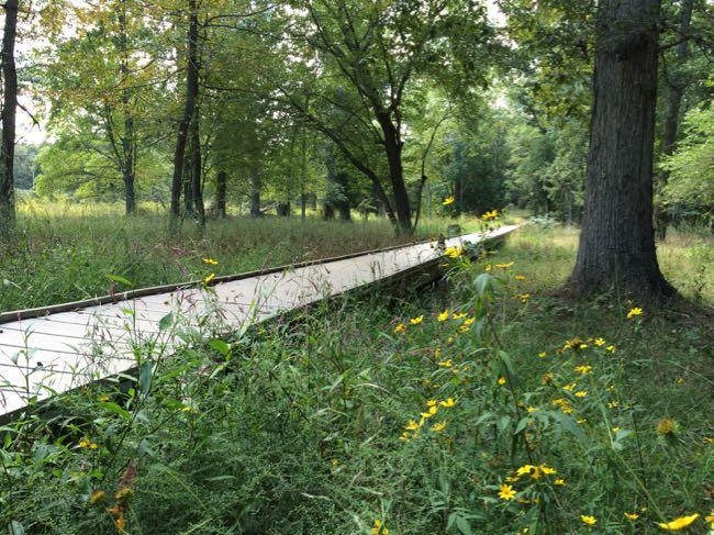 Stone Bridge boardwalk, Manassas Battlefield