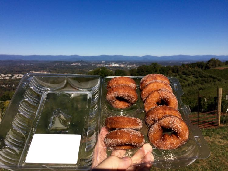 8 Great Casual Places To Eat In Charlottesville Virginia