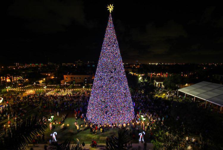 Delray Beach Florida 100 foot Christmas tree