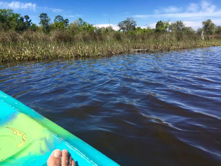 kayaking from Pascagoula Audubon River Center