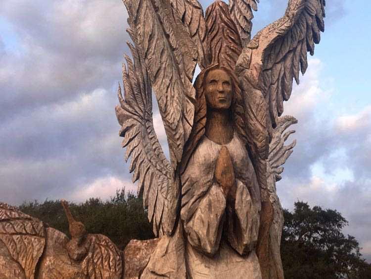 Angel oak in Bay St Louis