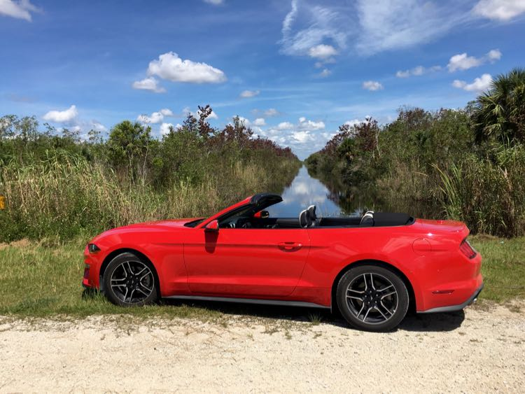 Amazing Florida Scenic Drives and Destinations