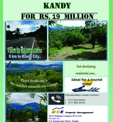 Land for Sale in Gurudeniya, Kandy