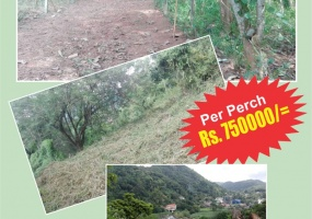 Upul Mawatha, Peradeniya, ,Land,For sale,Upul Mawatha,1094