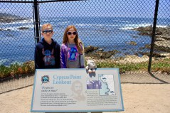 Cypress Point - We saw lots of sea otters and seals up close