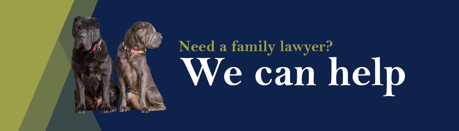 Need a family lawyer