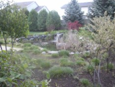 Backyard Waterfall 2