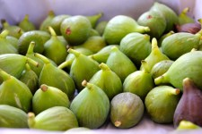 mcleod_creek_figs
