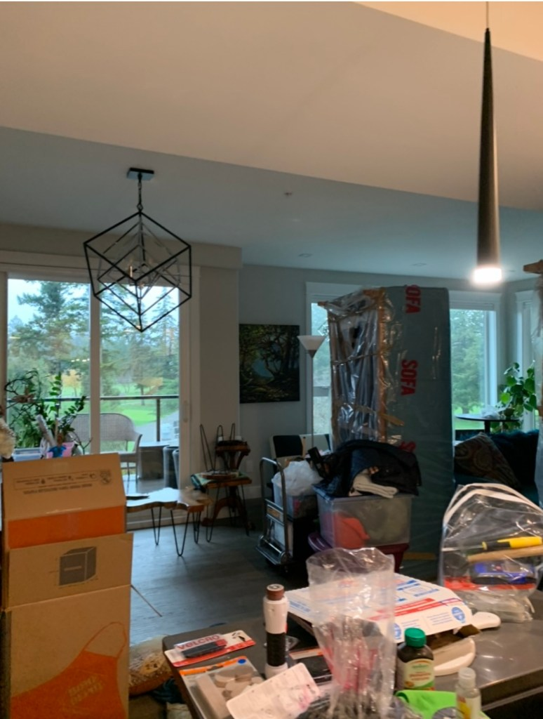 A living room filled with boxes and moving supplies.