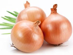 2 - Onion