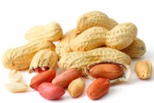 24 - Peanuts
