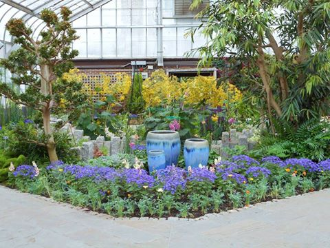 Local Gardens | Mill Creek Towne Garden Club
