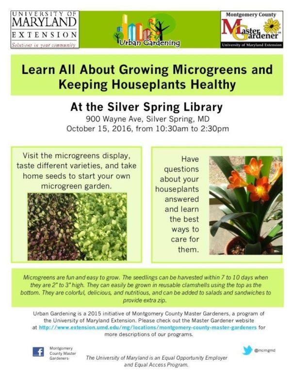silverspring_urban_gardening