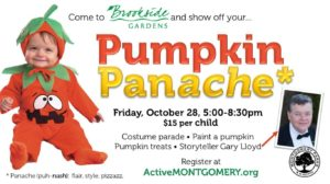 pumpkin_panache