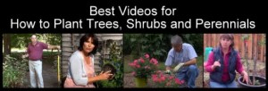 BestGardeningVideosCollages27