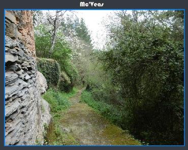 Camino rustico en Argul