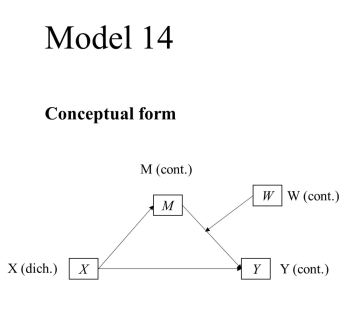 process model 14 (dich X - cont Y - cont M - cont W)