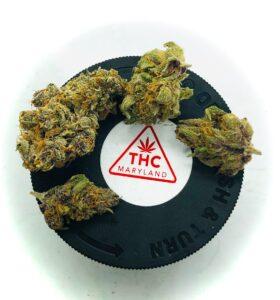 4 buds of purple obeah