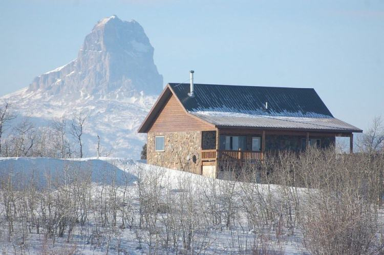 buying-homestead-property