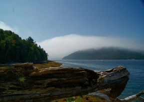 Mist Over Acadia Mountain by Donna Chalifour