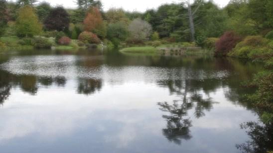 Kenn Assignment Azalea Garden
