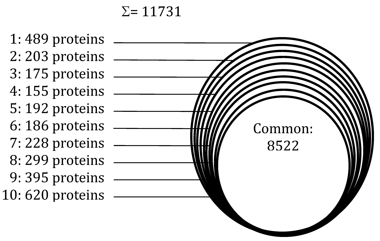 Venn Diagram Of Cell Organelle